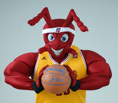 mad ant