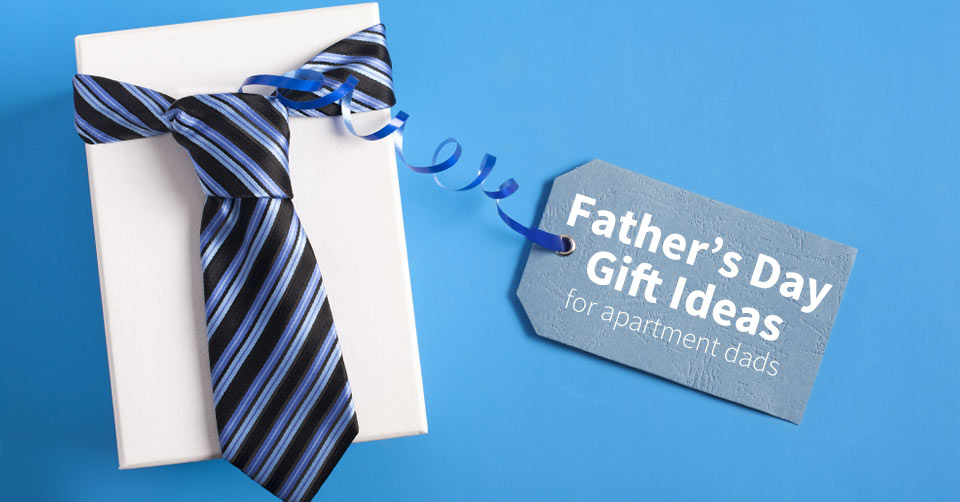 perfect father's day gifts for apartment dads